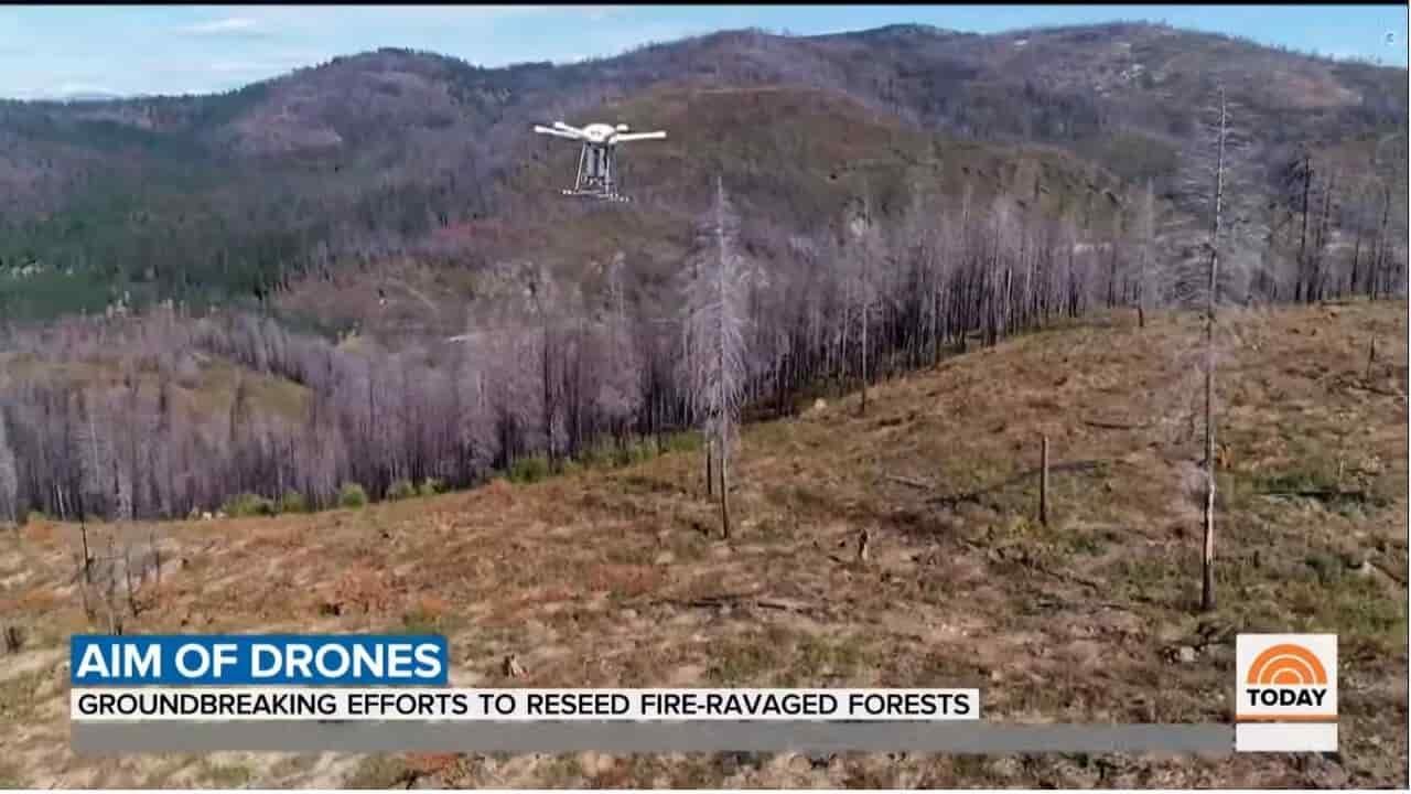 drone droneseed incendi