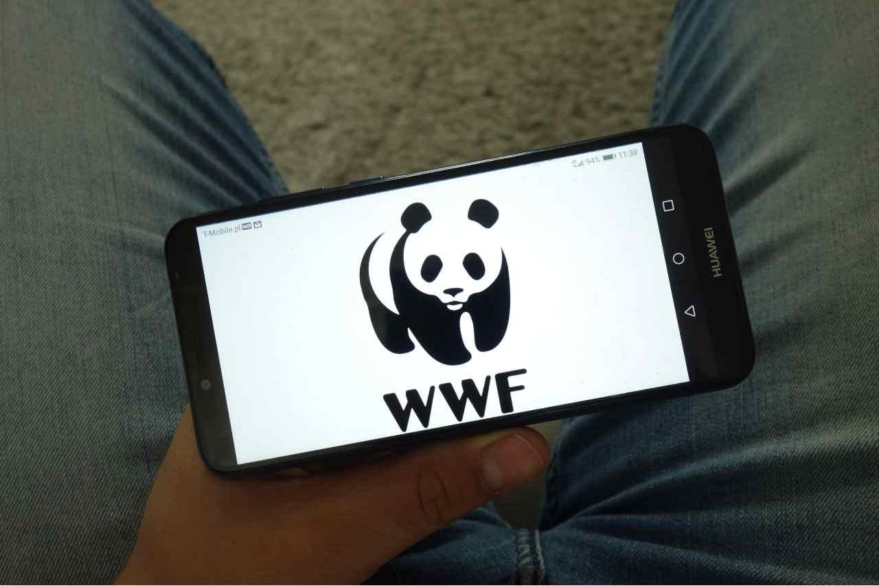 WWF e Huawei insieme per la salvaguardia dell'ambiente in Italia - MeteoWeek.com
