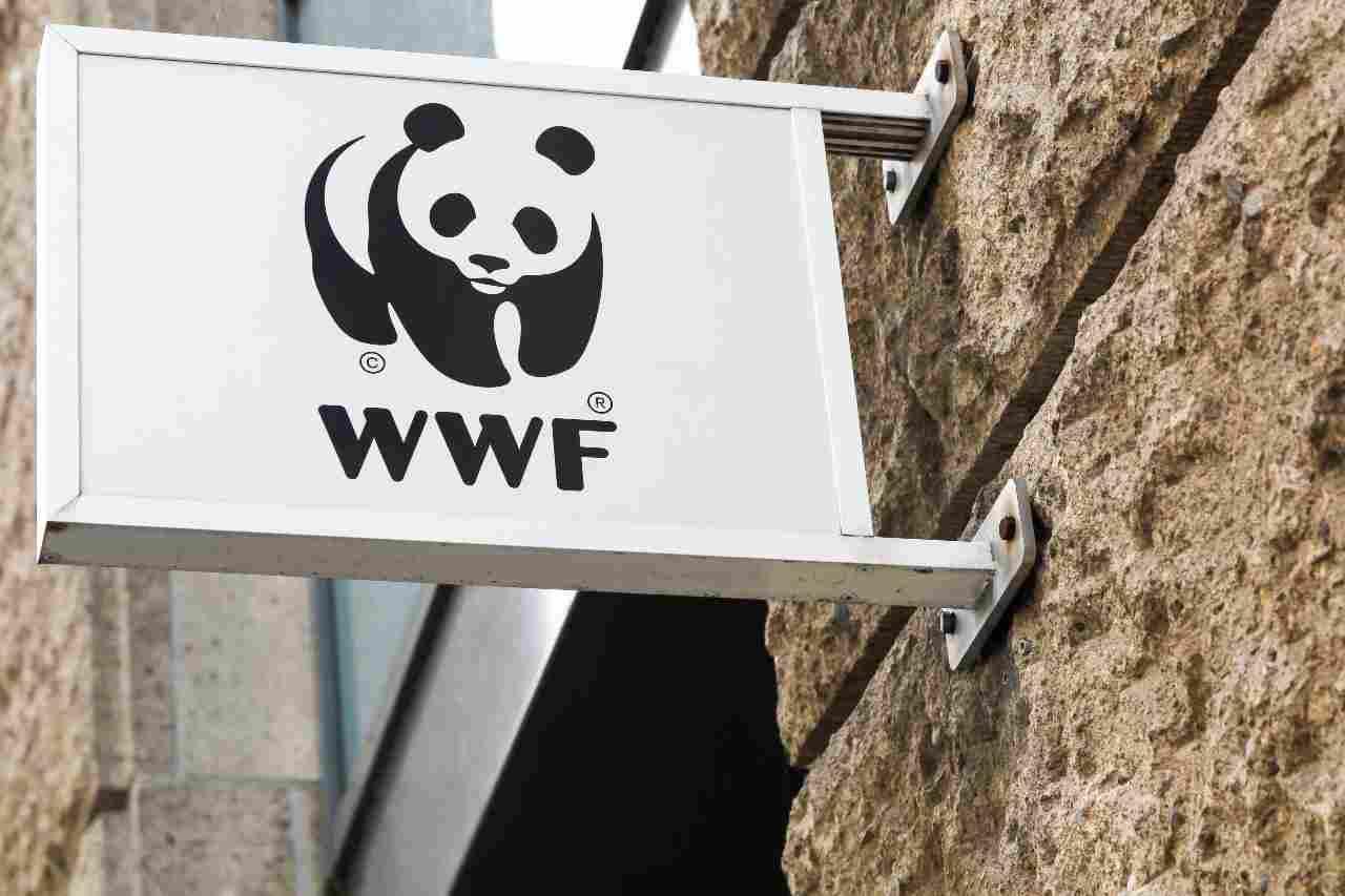 WWF, insieme a Huawei in 12 Oasi italiane in totale - MeteoWeek.com